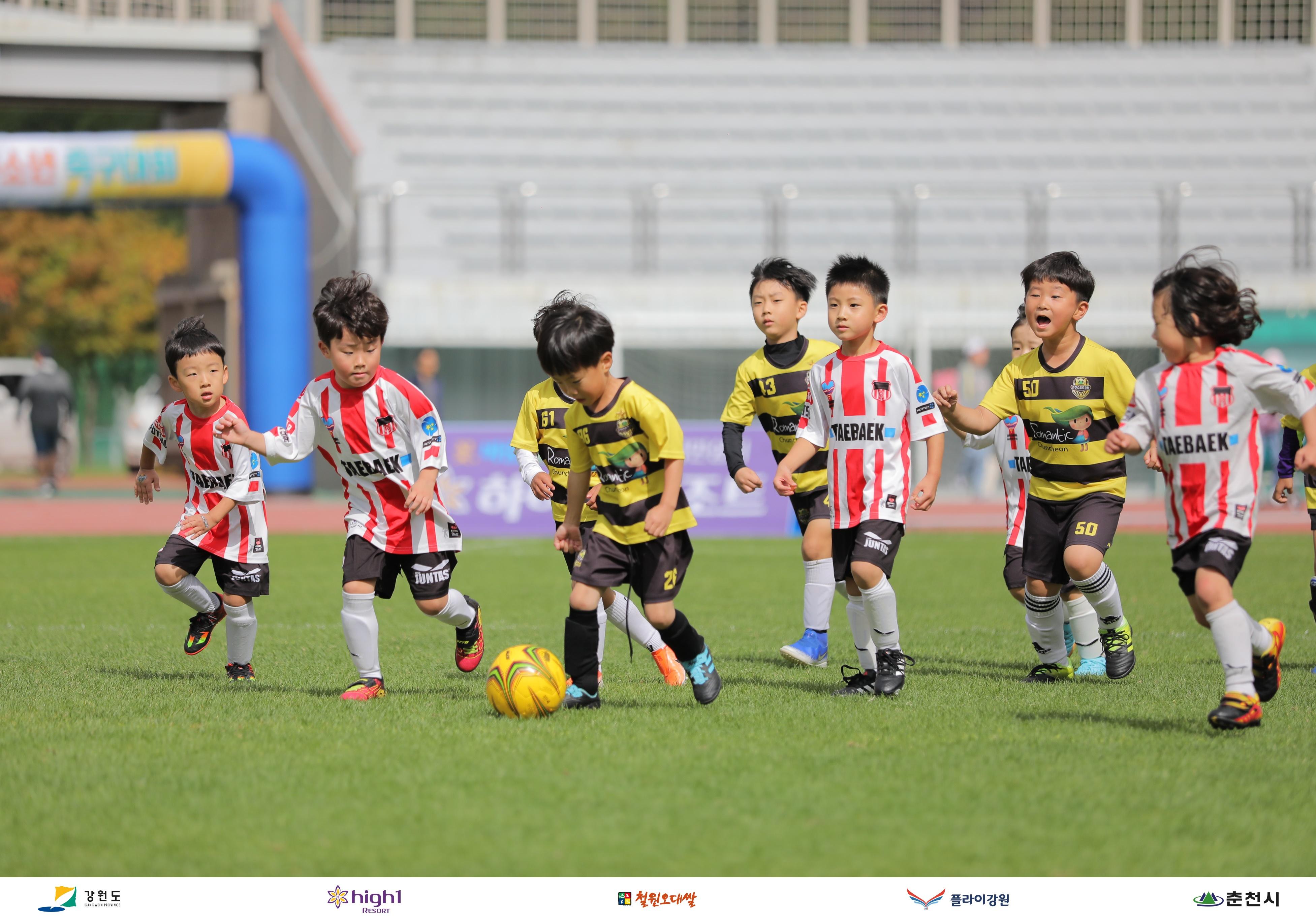 강원FC, '제1회 강원FC 유소년 축구 대회' 성황리에 마쳐